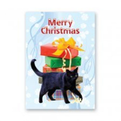 Cat (black) Christmas Cards pack of five